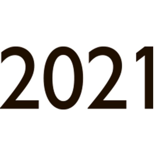 Ежедневники датированные 2021 - клише тиснения года