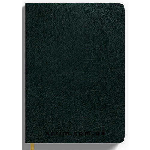 Щоденники Viata темно-зелені брендовані