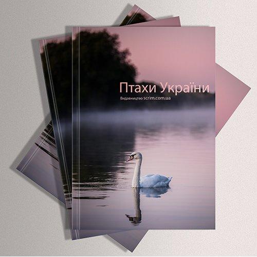 Друк каталогів продукції - лебеді